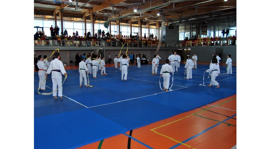 El judo complutense abarrota el Pabellón de Espartales